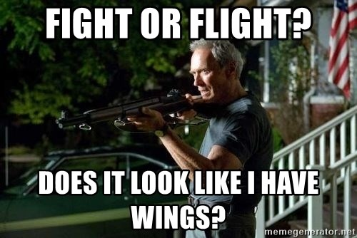 Clint Eastwood Get Off My Lawn - Fight or flight? DOES IT LOOK LIKE i HAVE WINGS?