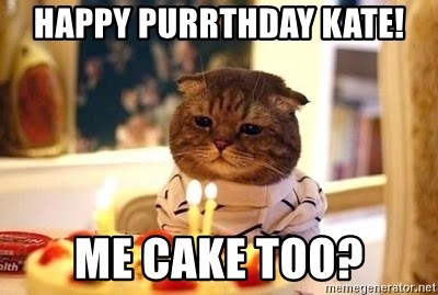 Birthday Cat - Happy purrthday kate! Me cake too?