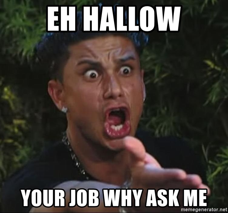 Pauly D - eh hallow your job why ask me