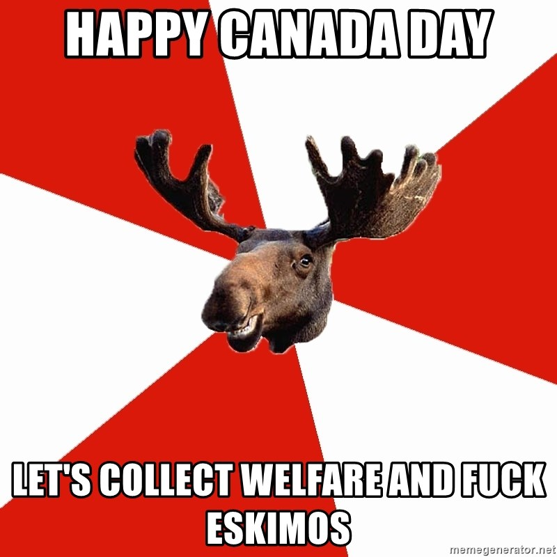 Stereotypical Canadian Moose - Happy canada day  Let's collect welfare and fuck eskimos