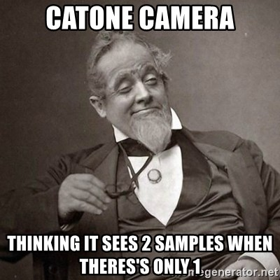 1889 [10] guy - catone camera thinking it sees 2 samples when theres's only 1