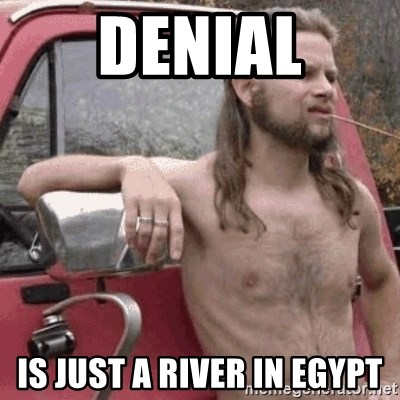 Almost Politically Correct Redneck - Denial is just a river in egypt