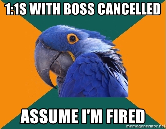 Paranoid Parrot - 1:1s with Boss Cancelled  Assume I'm Fired