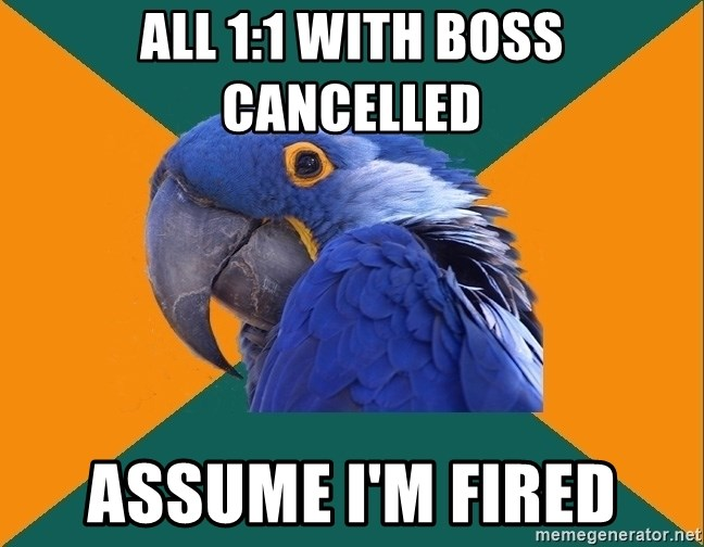 Paranoid Parrot - All 1:1 with Boss Cancelled Assume I'm Fired
