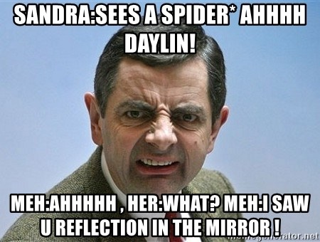 mr bean funny face - sandra:sees a spider* ahhhh daylin! meh:ahhhhh , her:what? meh:i saw u reflection in the mirror !