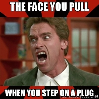 Arnold Schwarzenegger 1 - The face you pull  when you step on a plug