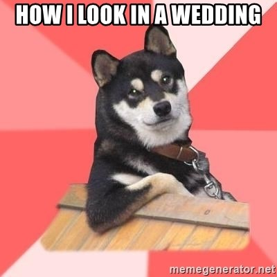 Cool Dog - how i look in a wedding
