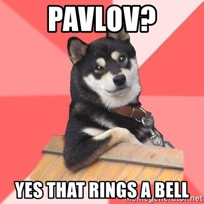 Cool Dog - Pavlov? Yes that rings a bell