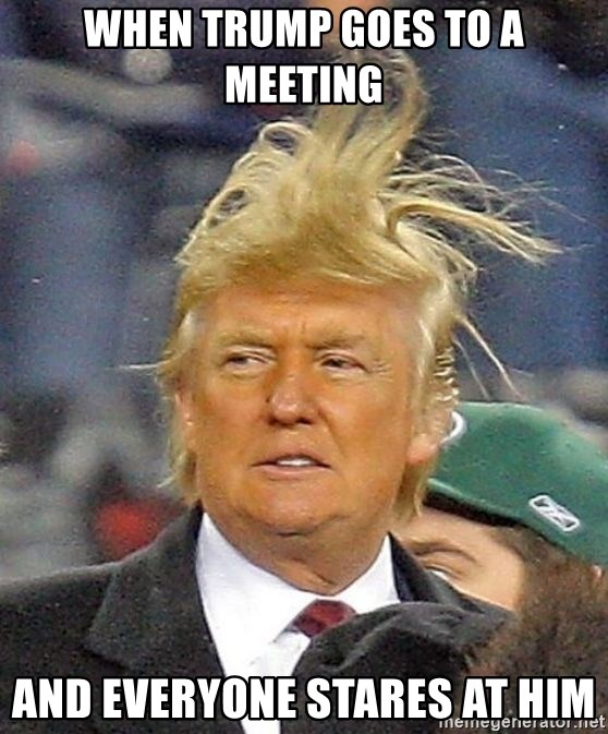 Donald Trump wild hair - when trump goes to a meeting and everyone stares at him