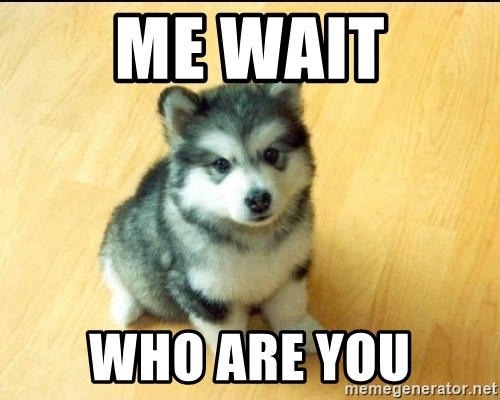 Baby Courage Wolf - me wait who are you