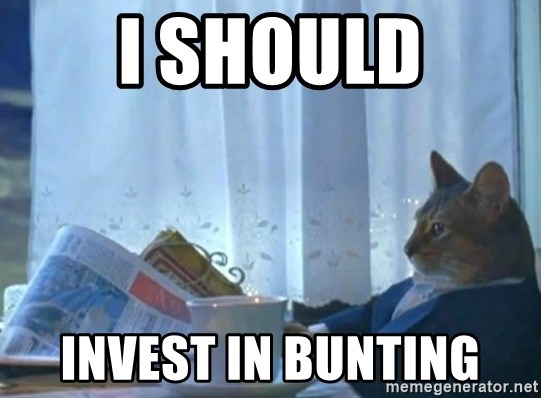 newspaper cat realization - I should Invest in bunting