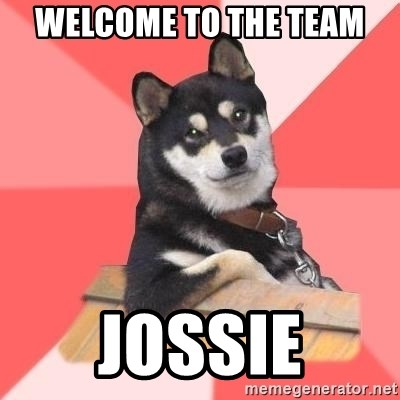 Cool Dog - Welcome to the Team Jossie
