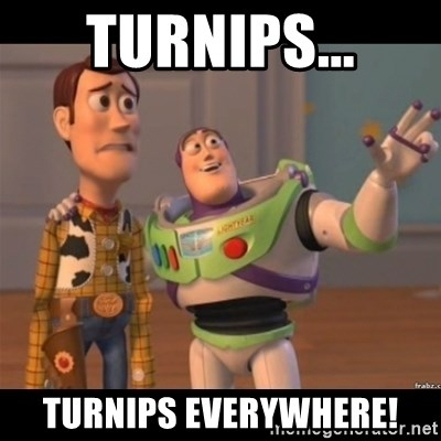 Buzz lightyear meme fixd - Turnips... Turnips Everywhere!