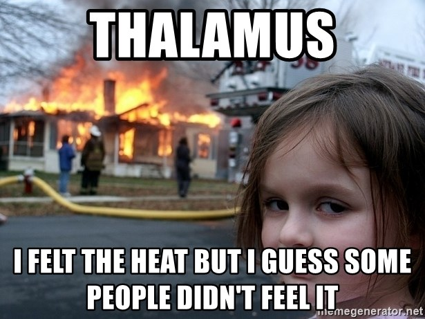 Disaster Girl - Thalamus I felt the heat but I guess some people didn't feel it