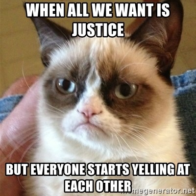 Grumpy Cat  - when all we want is justice  but everyone starts yelling at each other