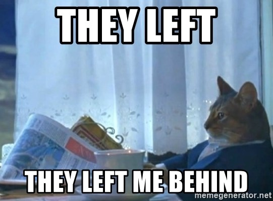 newspaper cat realization - they left they left me behind