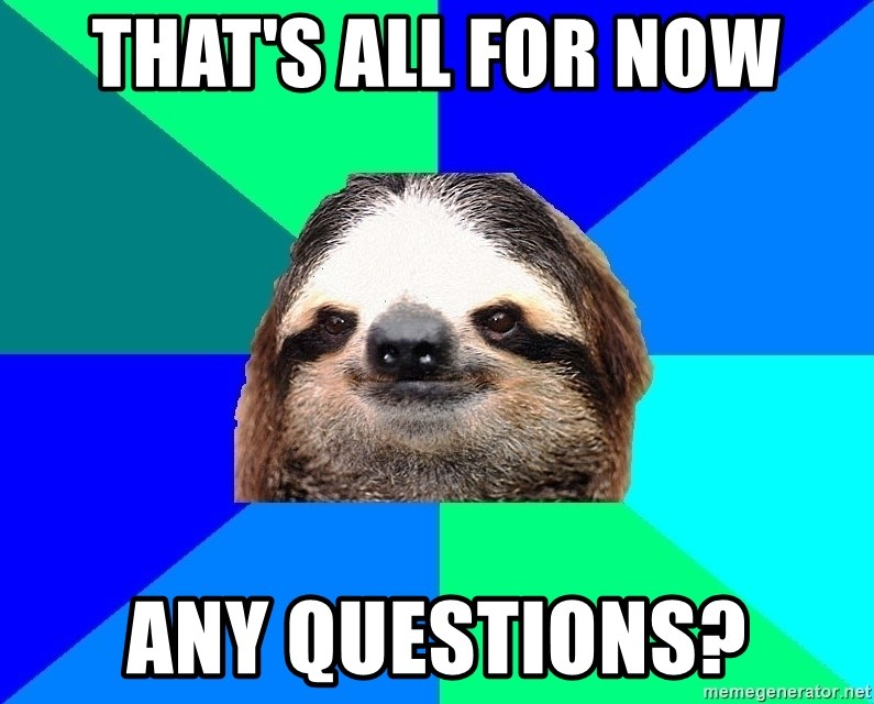 Socially Lazy Sloth - That's all for now Any questions?