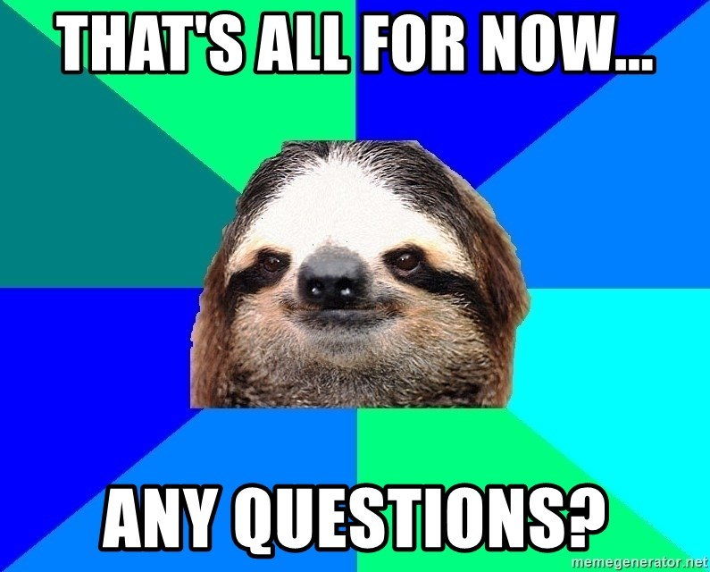 Socially Lazy Sloth - That's all for now... Any questions?