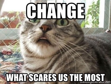 scared cat - Change What Scares Us The Most