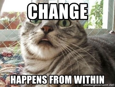 scared cat - Change Happens From Within