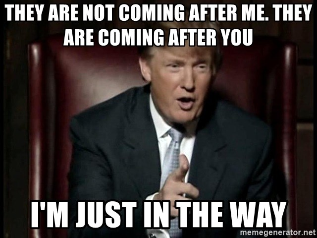 Donald Trump - they are not coming after me. they are coming after you i'm just in the way