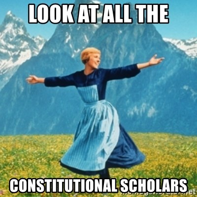 Sound Of Music Lady - LOOK AT ALL THE CONSTITUTIONAL SCHOLARS