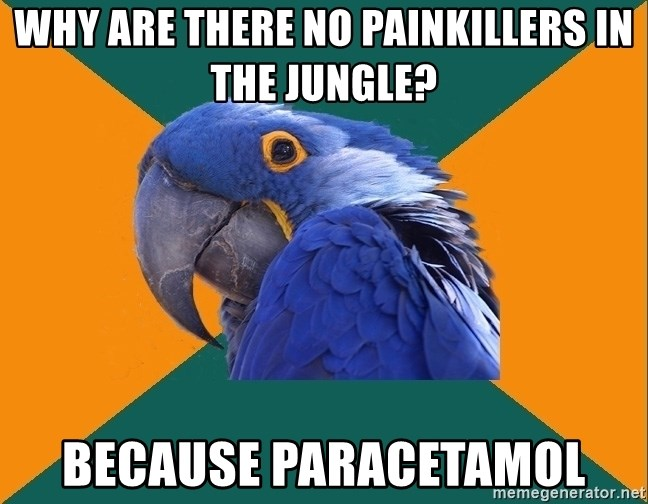 Paranoid Parrot - WHY ARE THERE NO PAINKILLERS IN THE JUNGLE? BECAUSE PARACETAMOL