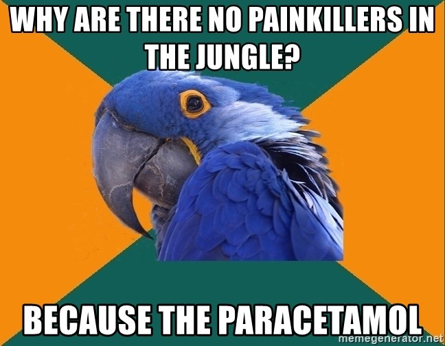Paranoid Parrot - WHY ARE THERE NO PAINKILLERS IN THE JUNGLE? BECAUSE THE PARACETAMOL