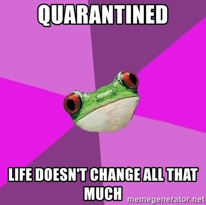 Foul Bachelorette Frog - quarantined life doesn't change all that much