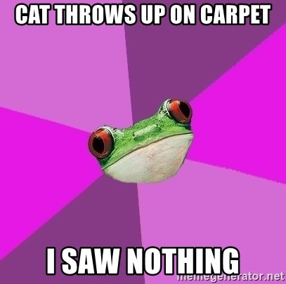 Foul Bachelorette Frog - cat throws up on carpet i saw nothing