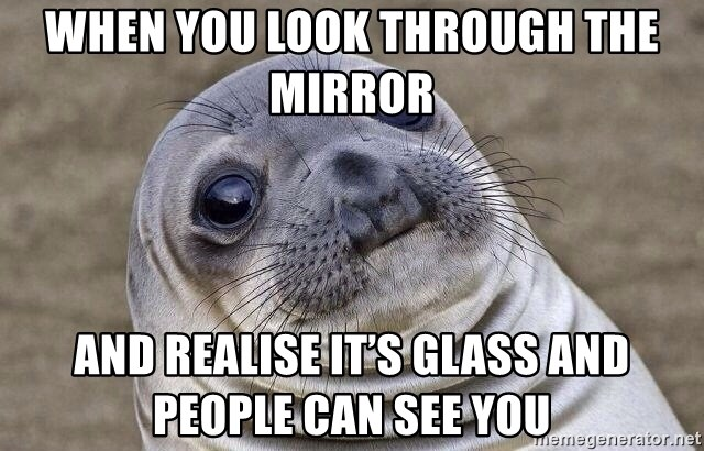 Awkward Seal - When you look through the mirror  And realise it's glass and people can see you
