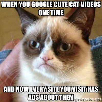 Grumpy Cat  - when you google cute cat videos one time and now every site you visit has ads about them