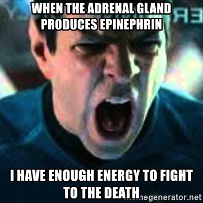 Spock screaming Khan - When the Adrenal gland produces epinephrin I have enough energy to fight to the death