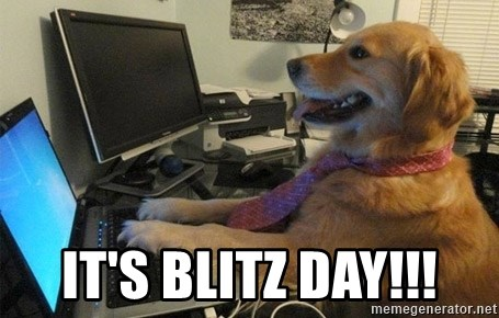 I have no idea what I'm doing - Dog with Tie - It's Blitz Day!!!
