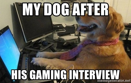 I have no idea what I'm doing - Dog with Tie - My dog after His gaming interview
