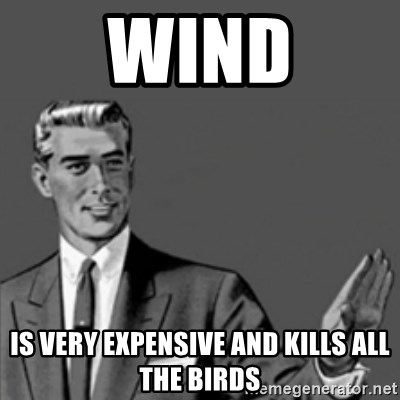Correction Guy - Wind is very expensive and kills all the birds