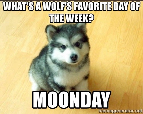Baby Courage Wolf - WHAT'S A WOLF'S FAVORITE DAY OF THE WEEK? MOONDAY