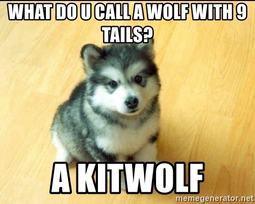 Baby Courage Wolf - what do u call a wolf with 9 tails? A KITWOLF
