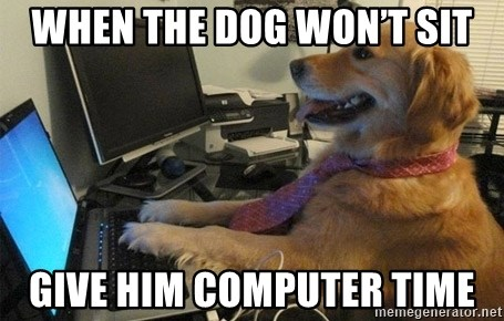 I have no idea what I'm doing - Dog with Tie - When the dog won't sit Give Him computer time