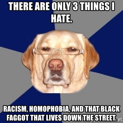 Racist Dawg - There are only 3 things I hate. Racism, Homophobia, and that black faggot that lives down the street.