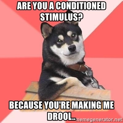 Cool Dog - Are you a conditioned stimulus? because you're making me drool..