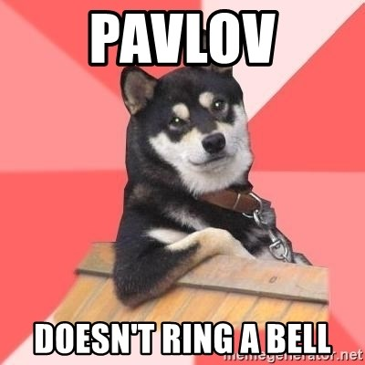 Cool Dog - Pavlov Doesn't ring a bell
