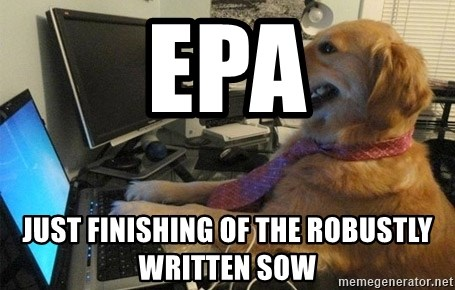 I have no idea what I'm doing - Dog with Tie - EPA Just finishing of the robustly written SOW