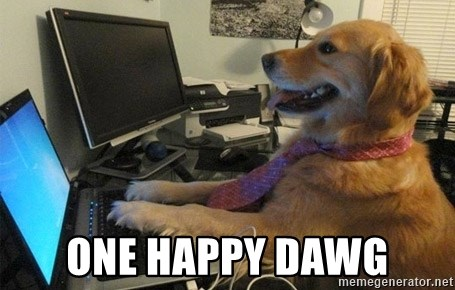 I have no idea what I'm doing - Dog with Tie - One Happy Dawg