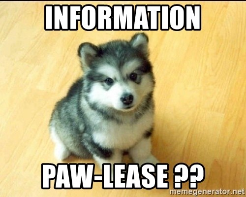 Baby Courage Wolf - Information Paw-lease ??