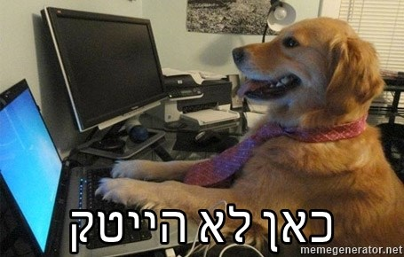 I have no idea what I'm doing - Dog with Tie - כאן לא הייטק