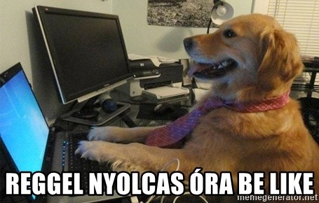 I have no idea what I'm doing - Dog with Tie - Reggel nyolcas óra be like