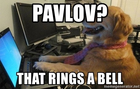 I have no idea what I'm doing - Dog with Tie - Pavlov? That rings a bell