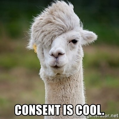 Hipster Llama - Consent is cool.