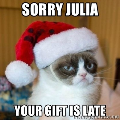 Grumpy Cat Santa Hat - Sorry Julia Your gift is late